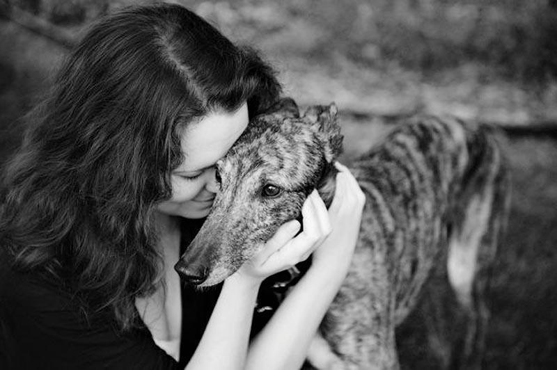 6. «Это фото было одним из самых трогательных. Эта борзая по кличке Кристин болела раком кости, но г