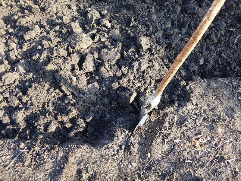 Дачный мотив... Из приключений штыковой лопаты (29).JPG