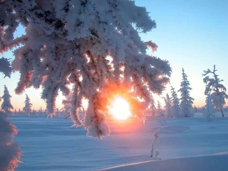 Зимнее Солнцестояние. Астрономический Новый Год