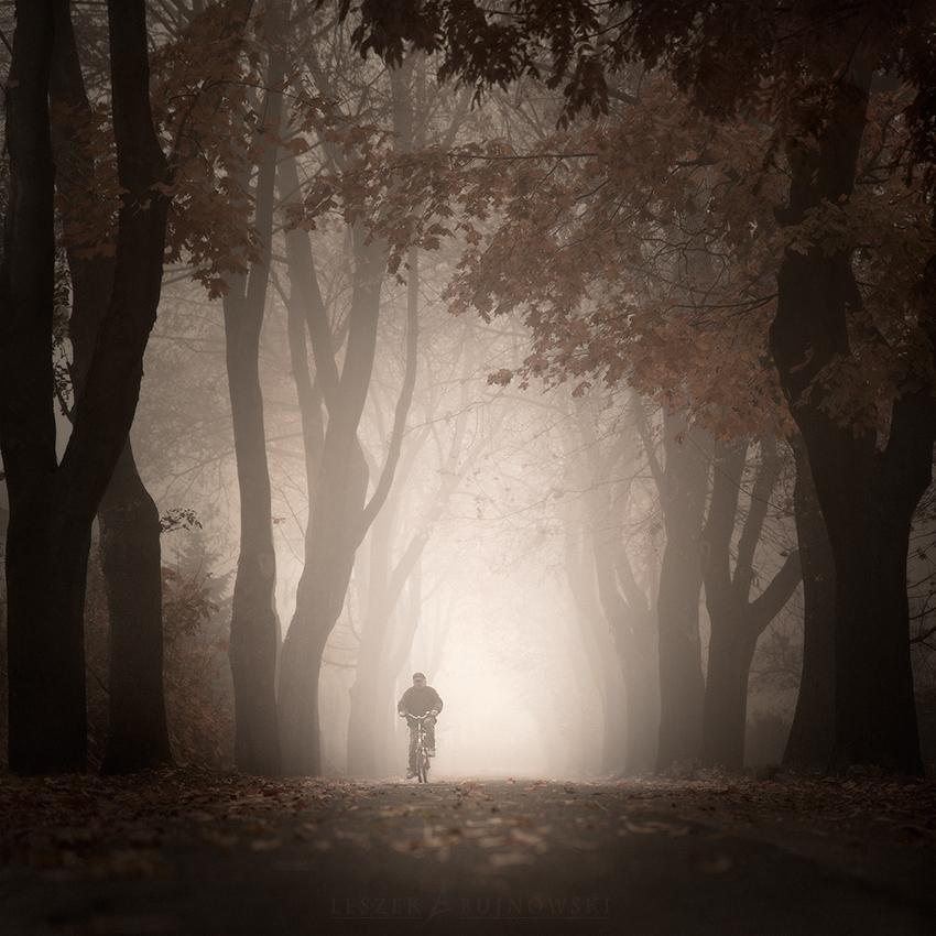 Лежек Бужновски. В тумане вещи кажутся не