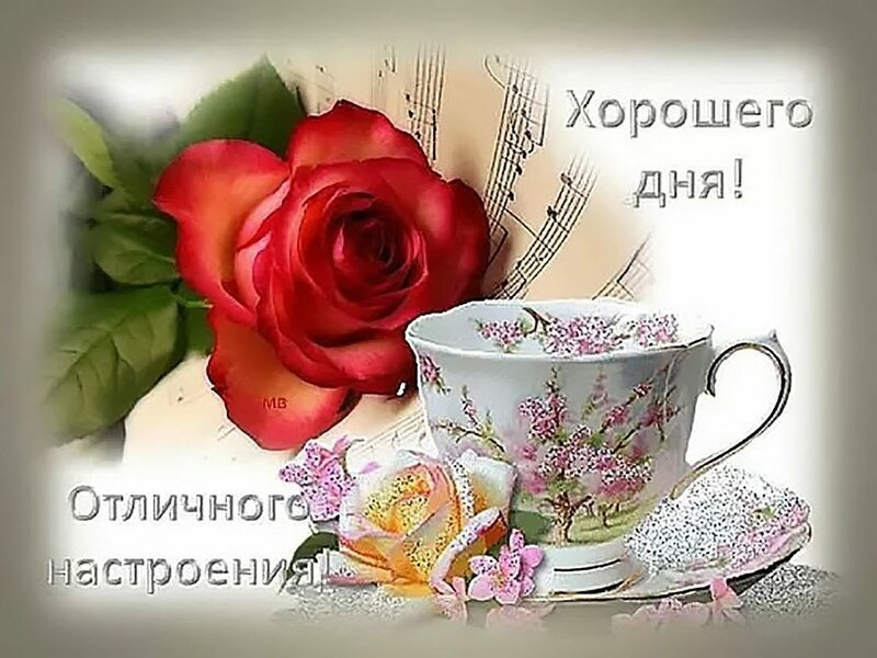 Картинки с красивыми пожеланиями доброго дня