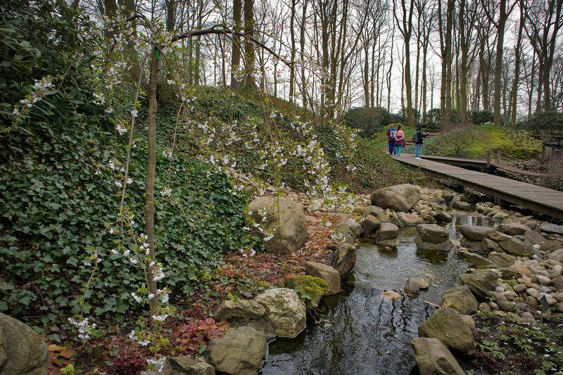 creek in the botanical garden of Keukenhof in spring