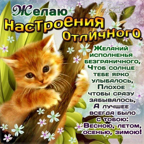 тихановичем открытки со стихами пожелания хорошего дня это