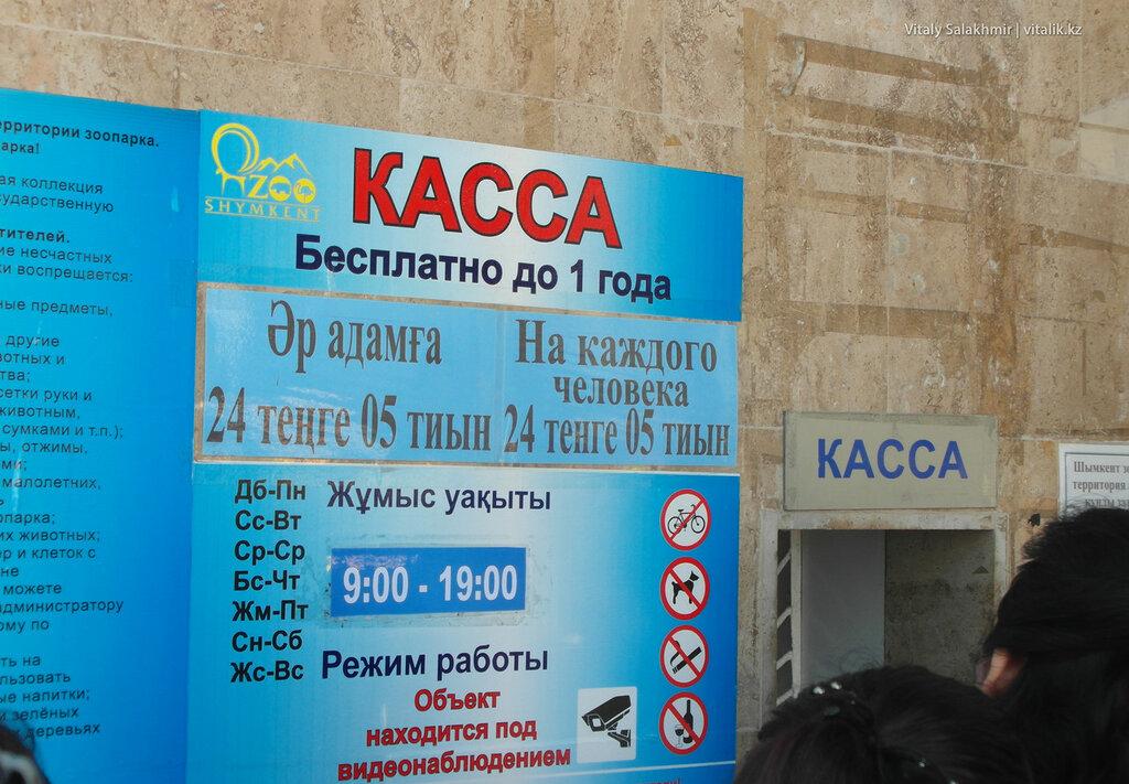 Касса зоопарка Шымкент 2018 вход