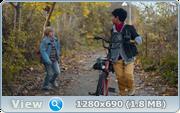 http//img-fotki.yandex.ru/get/903341/40980658.1f1/0_17c394_98ba3440_orig.png