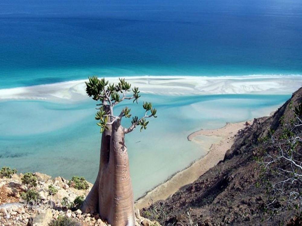 Удивительные пейзажи острова Сокотра