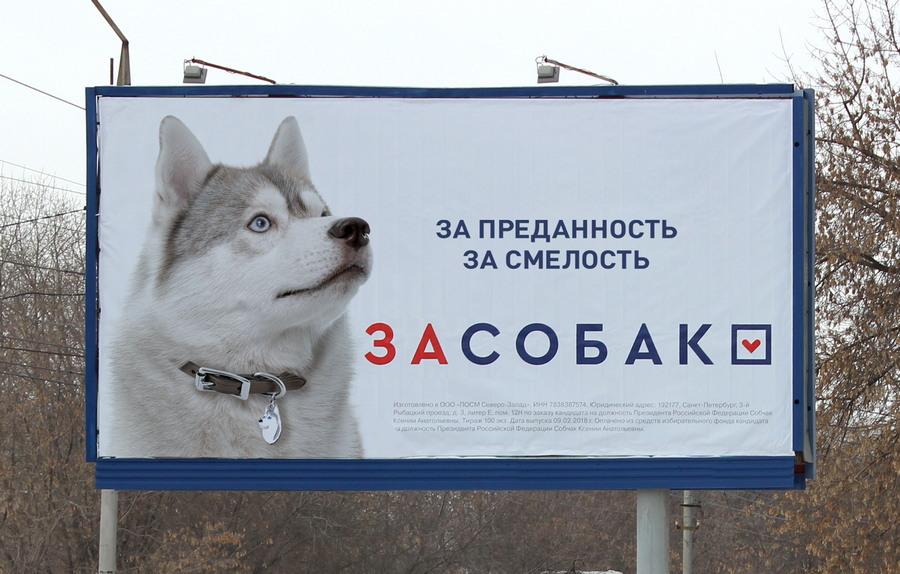 Подборка интересных и веселых картинок 03.03.18