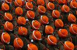 Парад индийских военных по случаю Дня Республики. Дели, Индия, 26 января 2017 года. Фото: Adnan Abidi / Reuters    INDIA-REPUBLICDAY/