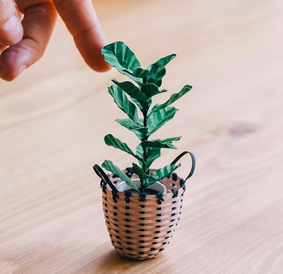 Amazing Tiny Paper Plants (5 pics)