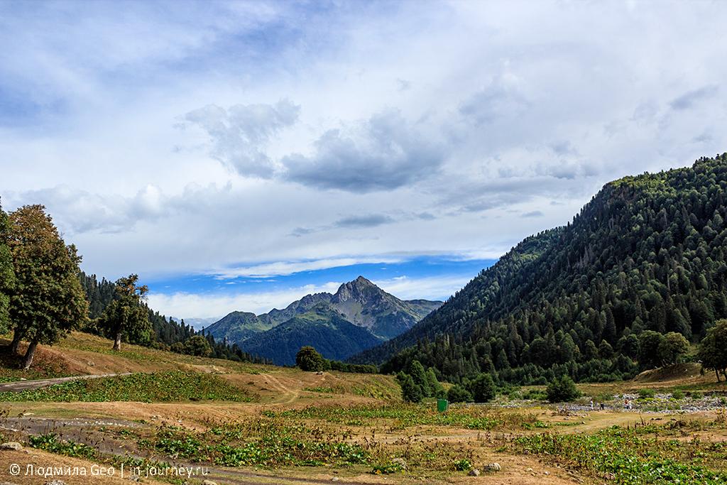 Альпийские луга в экскурсии по Рицинскому национальному парку