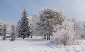 Зима и ветер