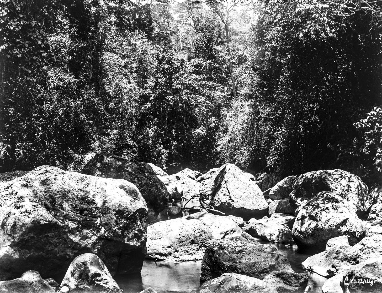 154. Вид ручья Муэ на высоте 2800 метров