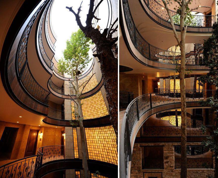 деревья дом окружающая среда дома Дом-2 архитектор здание