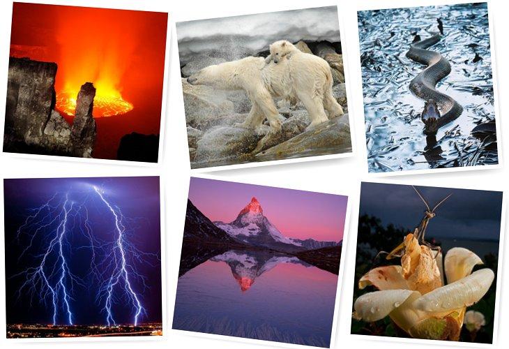 National Geographic: лучшие фотографии апреля (25 фото)
