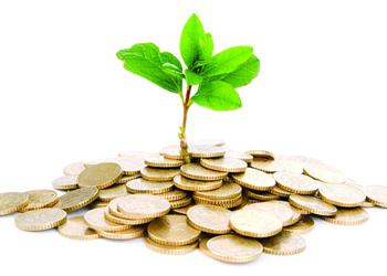 Иностранные инвестиции в Молдову за год выросли на 35%