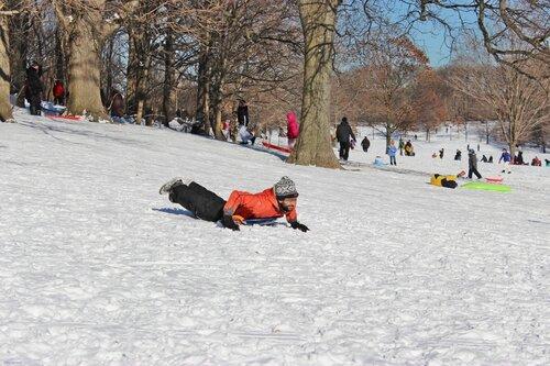 Снег в Центральном парке Нью-Йорка