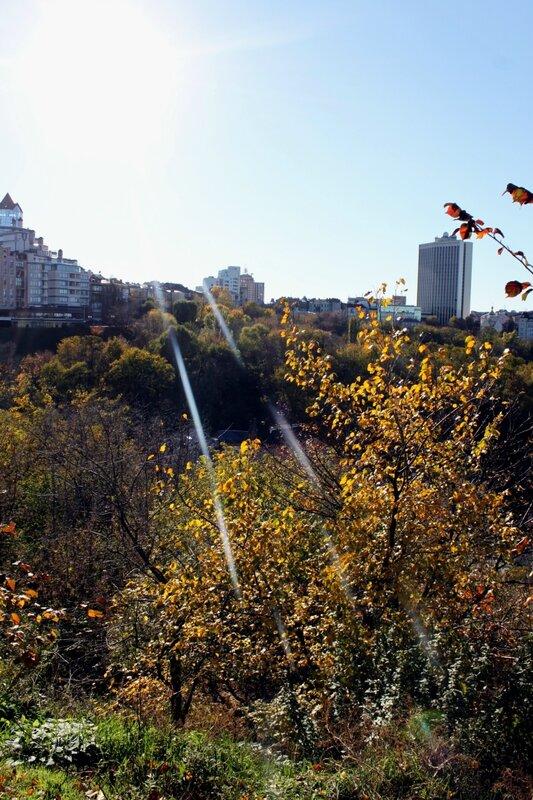 Вид с площадки обозрения Пейзажной аллеи