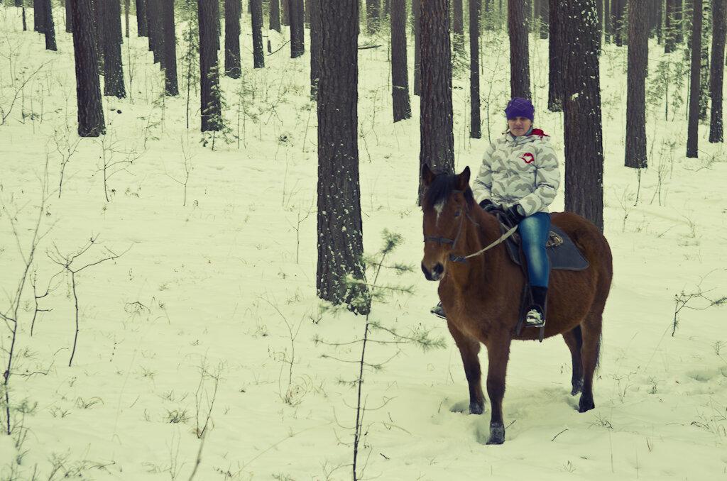 1. Конная прогулка в зимнем лесу. Снято на фотоаппарат Nikon D5100 со светосильным зум-объективом Nikon 17-55mm f/2.8G.