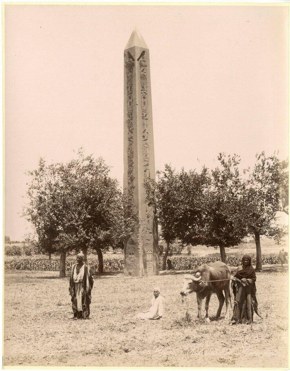 Гелиополь. Обелиск Сенусерта I. 1880-е