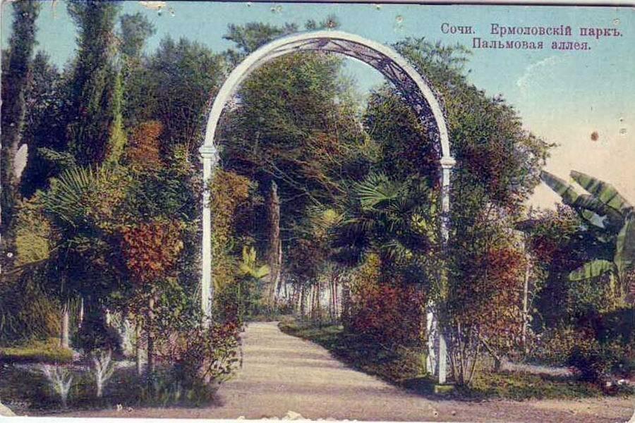 Ермоловский парк. Пальмовая аллея