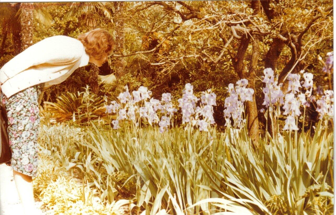 Садовник рассматривает цветы профессиональным взором