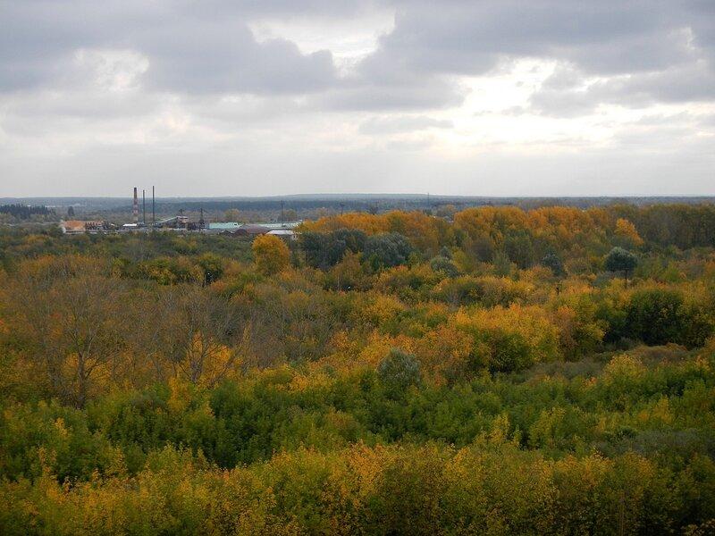 По-осеннему жёлтые деревья на берегу Вятки и завод в Вересниках вдали Dscn4671