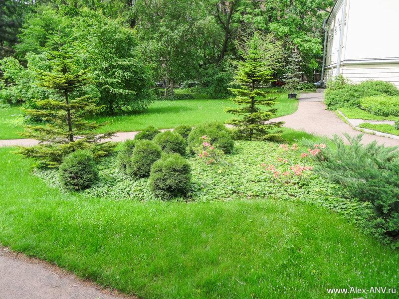 На этом моё путешествие по Ботаническом саду завершилось. Приезжайте туда сами и увидите ещё много красивейших растений, которые не попали ко мне в объектив...