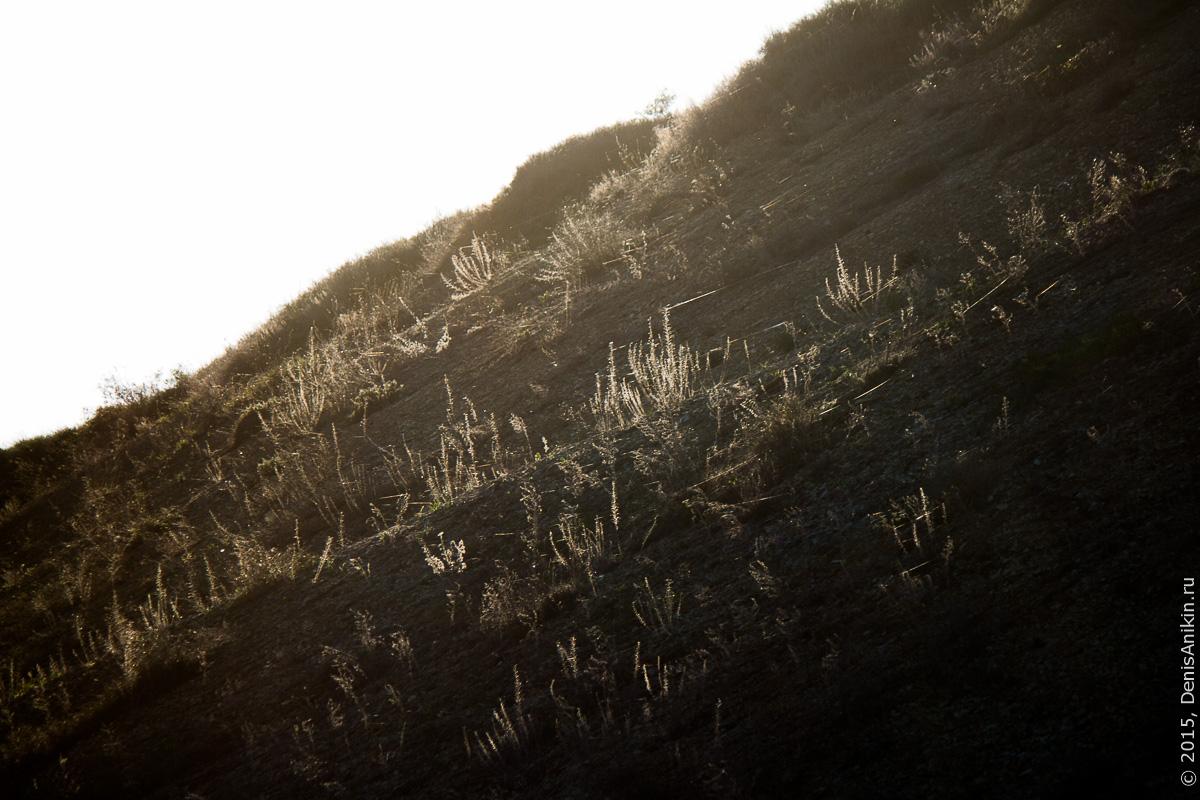 Змеёвы горы в районе Маркса 26