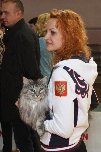 """Международная выставка кошек """"Удивительные кошки"""", 5-6 октября 2013, г. Сургут, ХМАО 0_dd9c4_cd8104fe_L"""