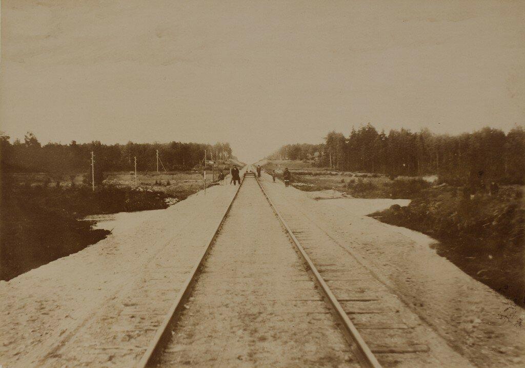Нейгаузен. Железнодорожные пути возле станции