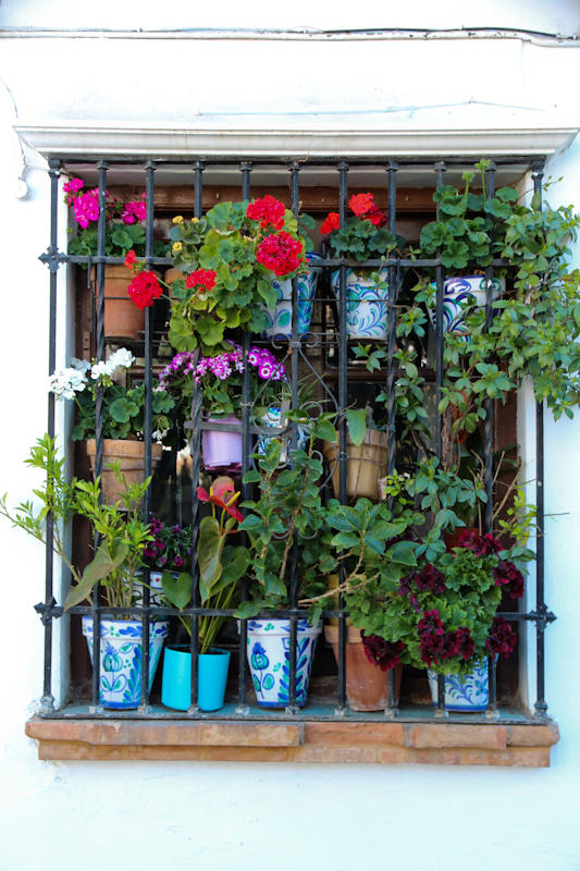 Цвета Андалусии: белые города, песчаные дворцы, алое фламенко