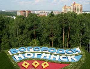 20140122_17-45-Власти подмосковного Ногинска не планируют следовать совету Жириновского