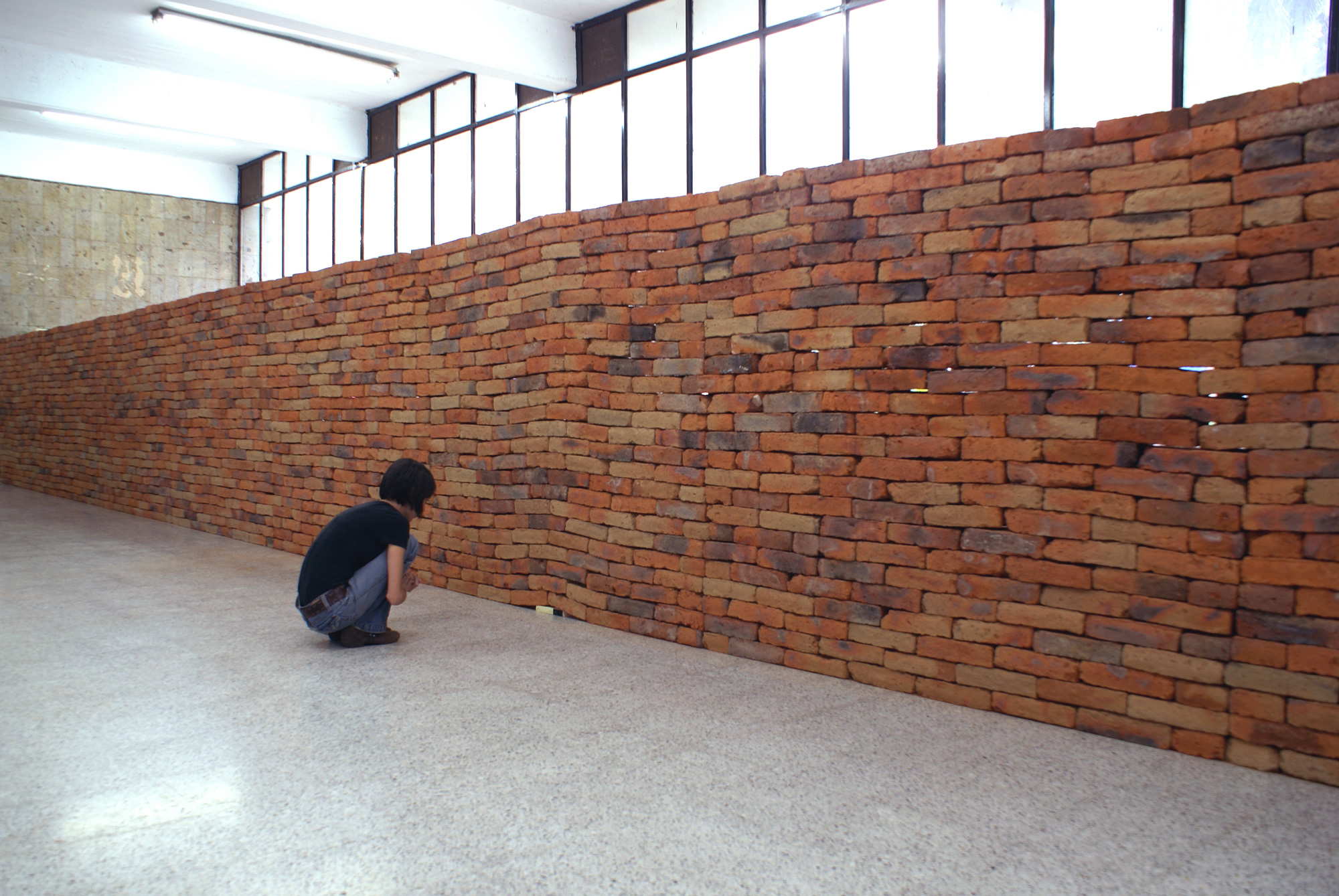 A Single Book Disrupts the Foundation of a Brick Wall by Jorge Mendez Blake (5 pics)