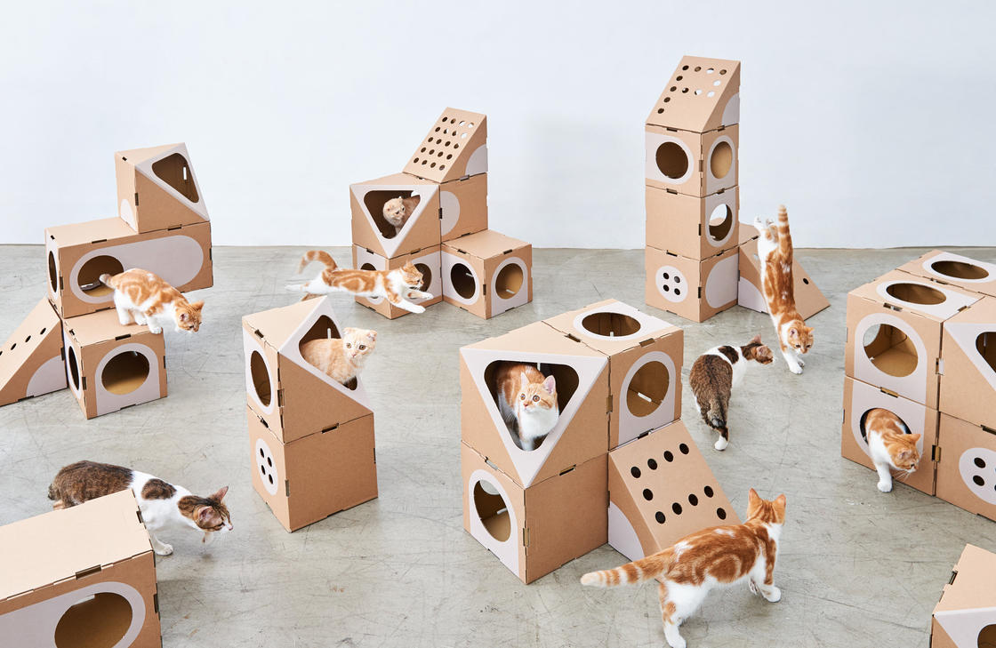 Cat Rooms – Cute and clever modular houses for cats (8 pics)