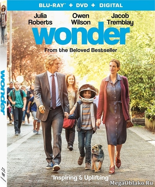 Чудо / Wonder (2017/BD-Remux/BDRip/HDRip)