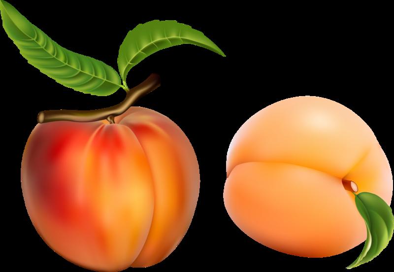 овощи-фрукты (8).png