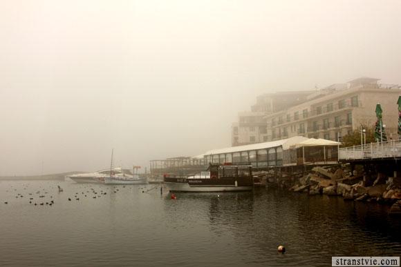Дома в тумане