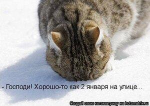 http://img-fotki.yandex.ru/get/9060/194408087.5/0_b322c_ecae8a4c_M.jpg
