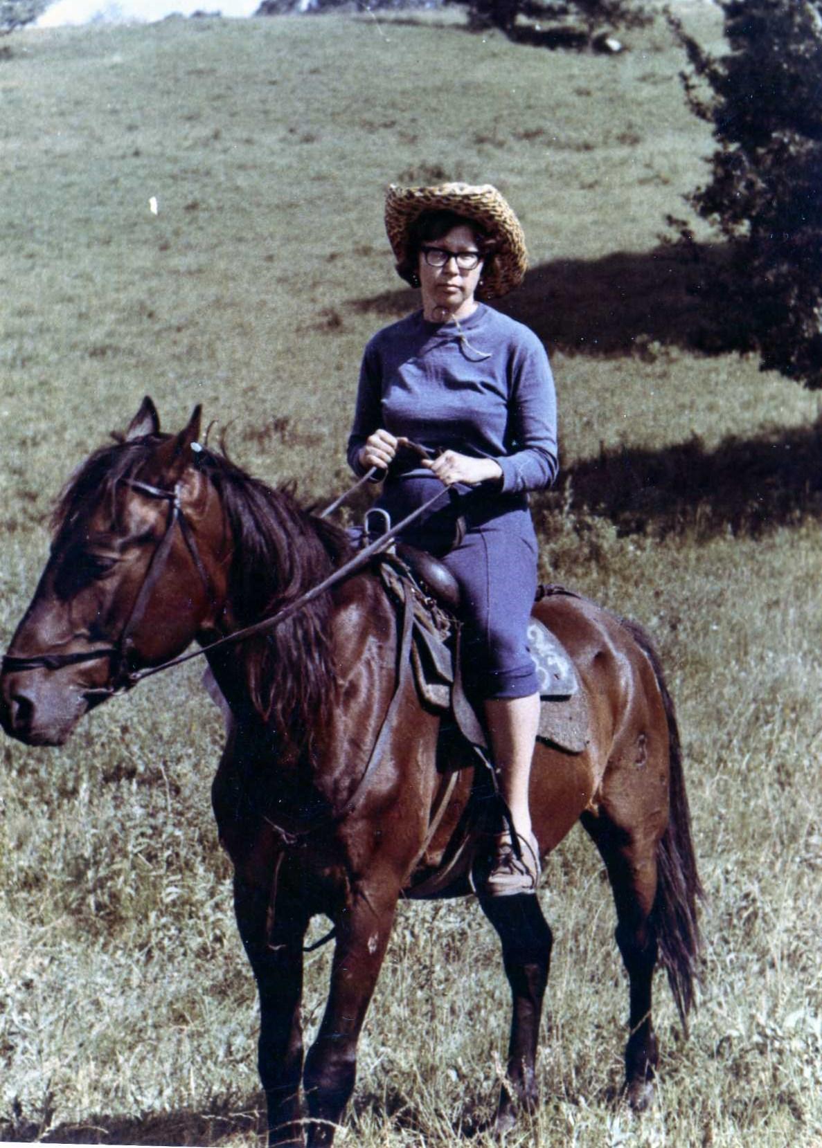 Я на коне,