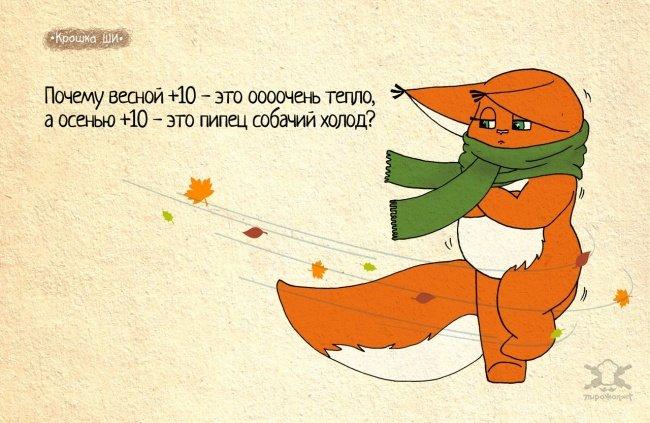 0 180066 e7b521f1 orig - Крошка Ши  Леси Гусевой