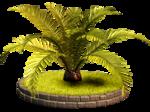 Palms  (20).png