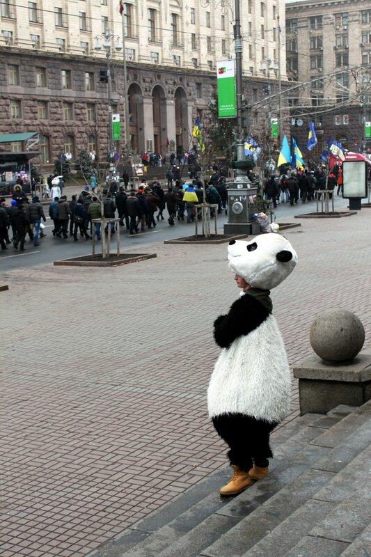 Панда на Крещатике