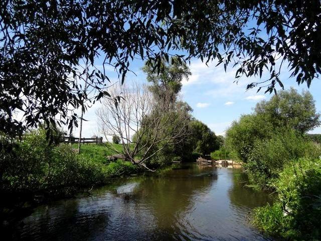река Инза