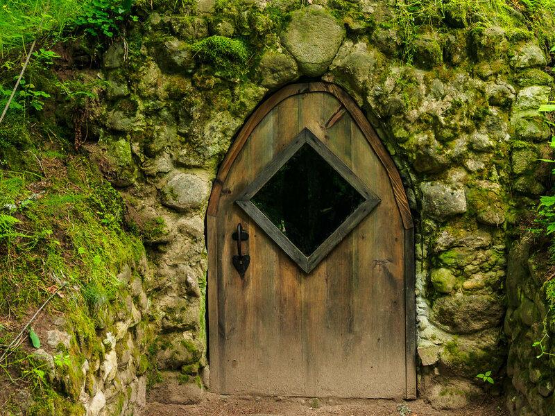 вернуться в парк и найти непонятную дверцу.