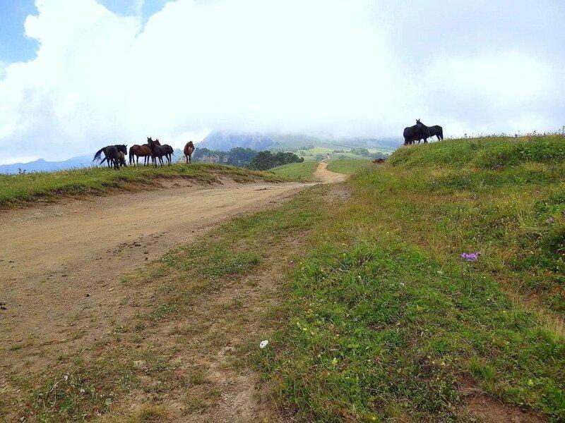 В походе, лето, Кавказ