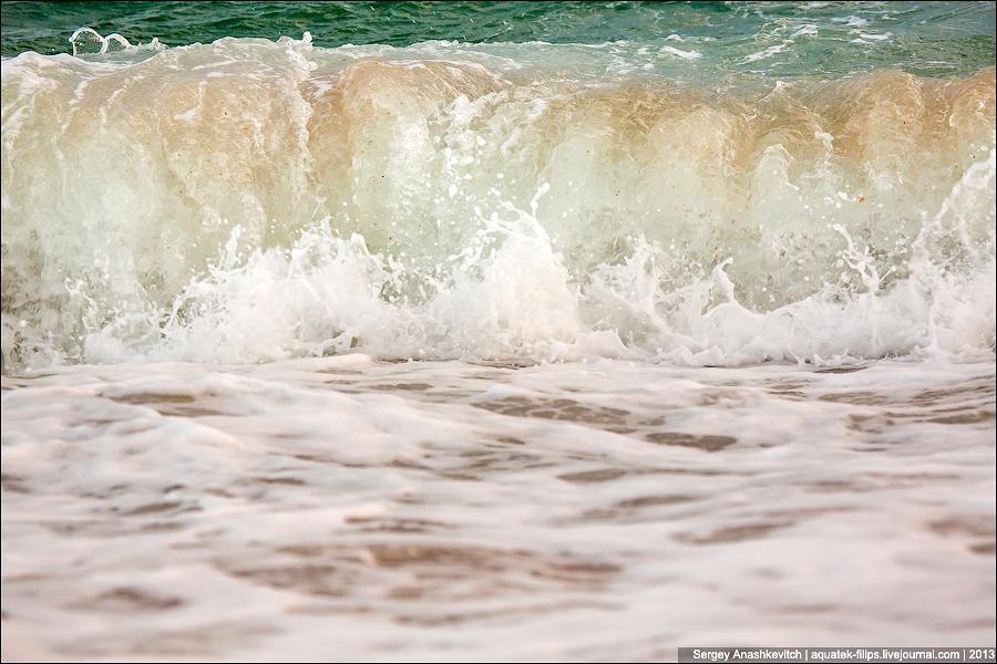 Закатное золото моря