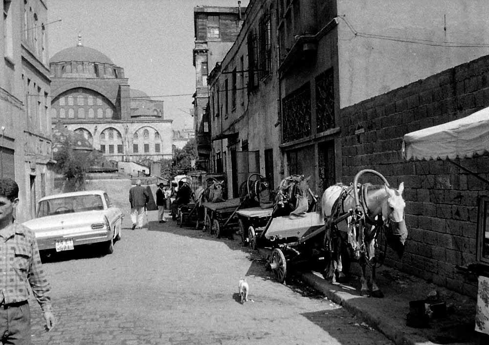 Турция. Стамбул, уличная сцена