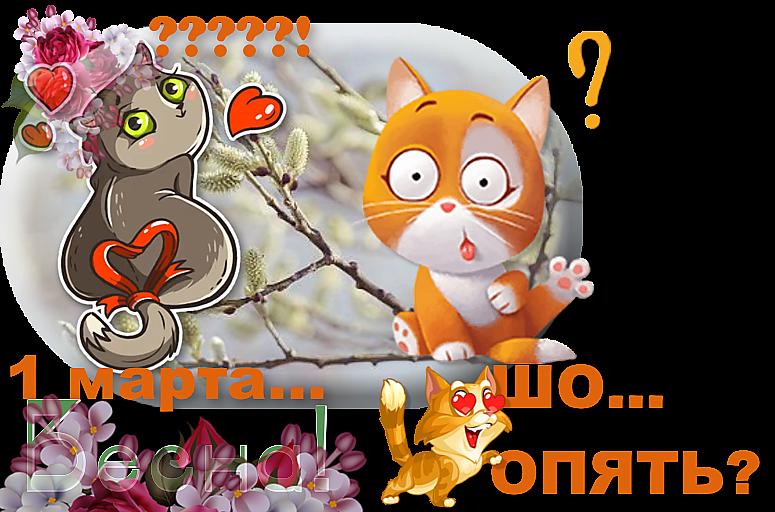 я-праздник-кошек-1 ИN.png