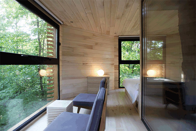Stunning And Comfy Tree House