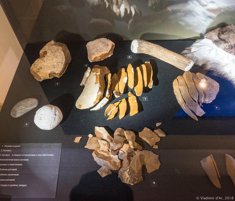 Выставка Зарайская верхнепалеолитическая стоянка